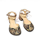 Босоножки с закрытым носком из кожи бронзового цвета и питона, каблук 4см, в наличии размер 36, фото 3