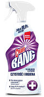 Cillit Bang чистящее средство универсальное Антипятна гигиена, 750 мл