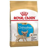 Сухой корм Royal Canin Chihuahua Puppy для щенка чихуахуа до 8 месяцев, 1.5 кг