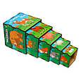 Кубики - матрёшки: Животные - среда обитания, фото 3