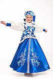 Карнавальный костюм МЕТЕЛИЦЫ для девочки / BL - ДНг24, фото 4