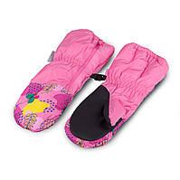 Термоварежки детские. Варежки для девочки TuTu арт 3-005106 (2-4, 4-6 7-9 лет), фото 1