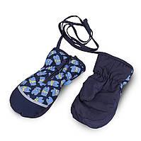 Термоварежки детские.Варежки для мальчика из плащевки TuTu арт. 3-005103( 2-4, 4-6 лет)