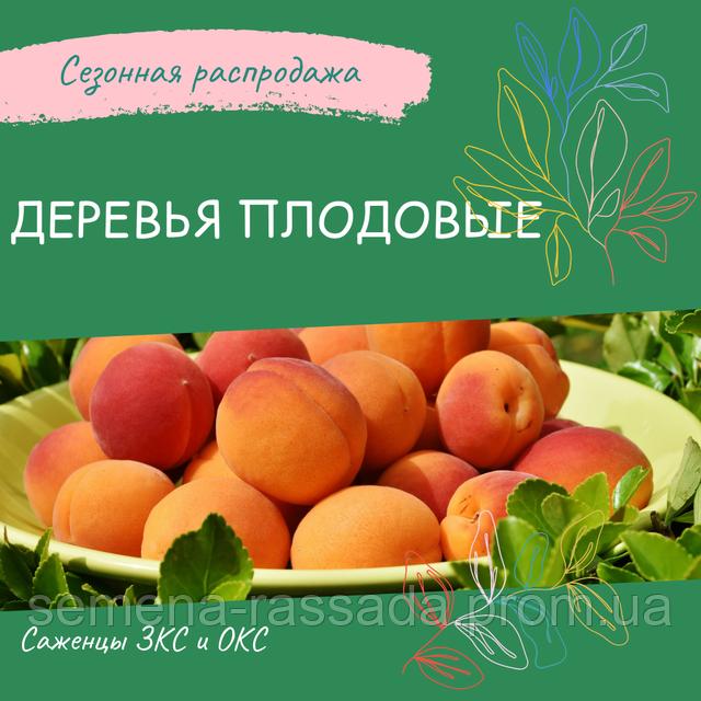 Плодоые растения