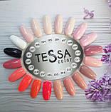 Гель-лак Tessa №017, 9 мл, фото 2