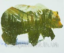 """Картина по номерам """"Медведь"""" 40*50 см, краски - акрил"""