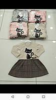 Плаття для дівчинки на 3-7 років персикового, сірого, рожевого, бежевого кольору кішечка оптом