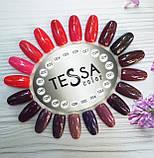 Гель-лак Tessa №022, 9 мл, фото 2