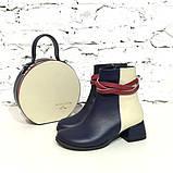 Кожаные ботинки с плетеной косой вокруг лодыжки, цвет темно-синий/ беж/ красная груша, фото 5