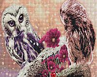 Алмазная мозаика 40*50 см Пара сов