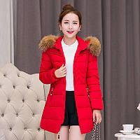 Куртка женская демисезонная меховой воротник без капюшона приталенная