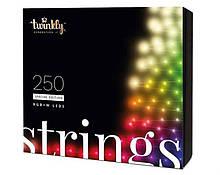 Smart LED Гирлянда Twinkly Strings RGBW 250, BT+WiFi, Gen II, IP44, кабель бесцветный