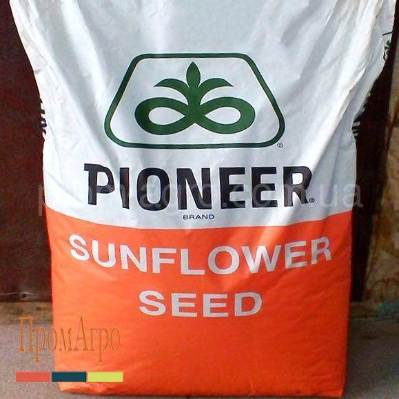 Семена подсолнечника Pioneer P64HE144 Высокоолеиновый посевной гибрид подсолнуха Пионер П64ГЕ144