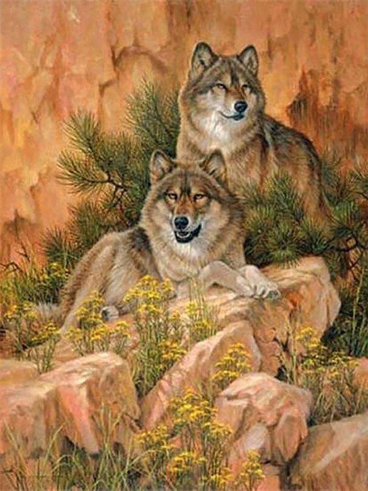 Алмазная вышивка мозаика Чарівний діамант Семья волков. Отдых на камнях КДИ-0923 45х60см 24цветов квадратные