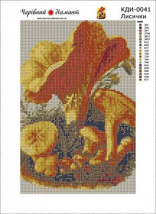 КДИ-0041 Набор алмазной вышивки Лисички, фото 2