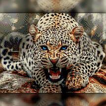 TWD20065 Набор алмазной вышивки Злой леопард, 30х40 см, фото 2
