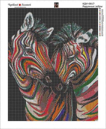КДИ-0817 Набор алмазной вышивки Радужные зебры, фото 2