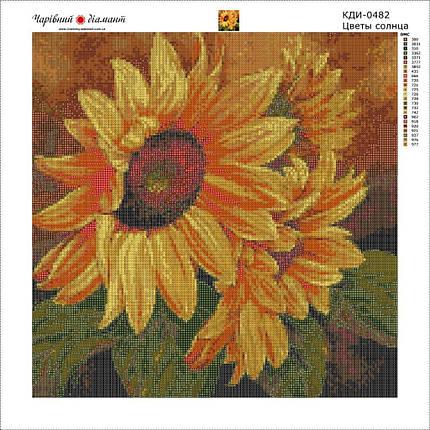 КДИ-0482 Набор алмазной вышивки Цветы солнца, фото 2