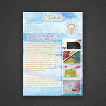 DM-035 Набір алмазної живопису Метелик на квітці, фото 3