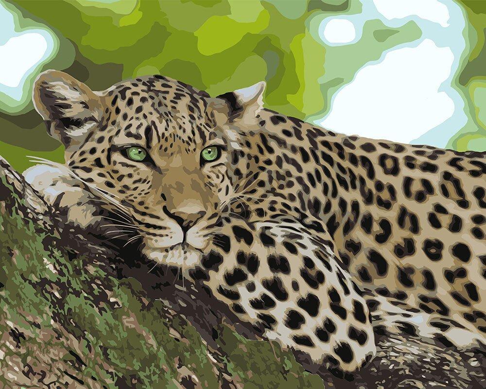 KHO4175 Картина для рисования по номерам Отдых хищника, Без коробки