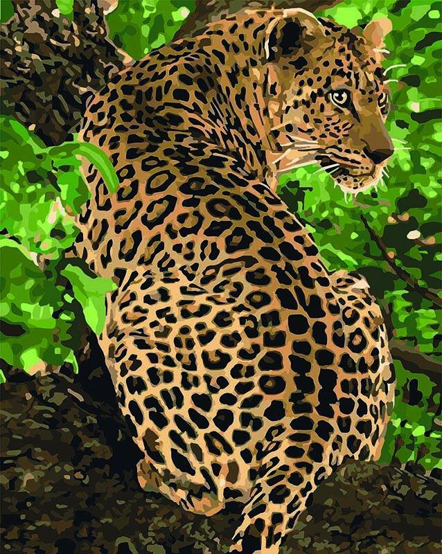 KH4101 Раскраска по номерам Леопард на дереве, Без коробки