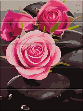 ASW081 Раскраска по номерам на деревянной основе Розы на камнях, В картонной коробке, фото 2