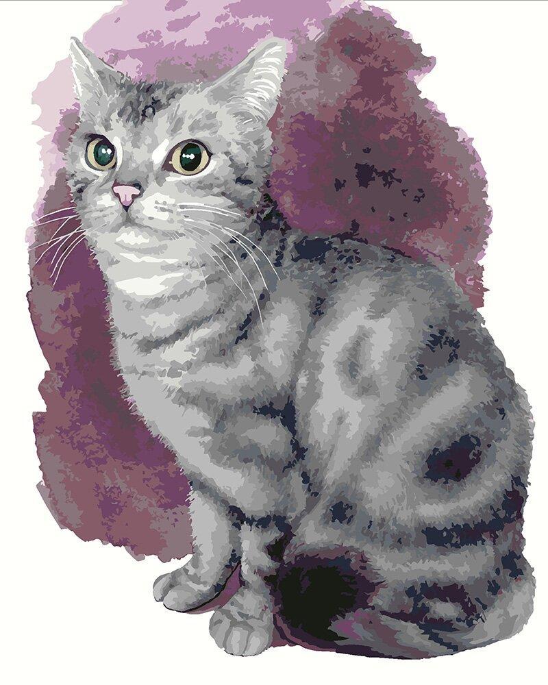 KH4187 Картина для рисования по номерам Маленький котенок, Без коробки