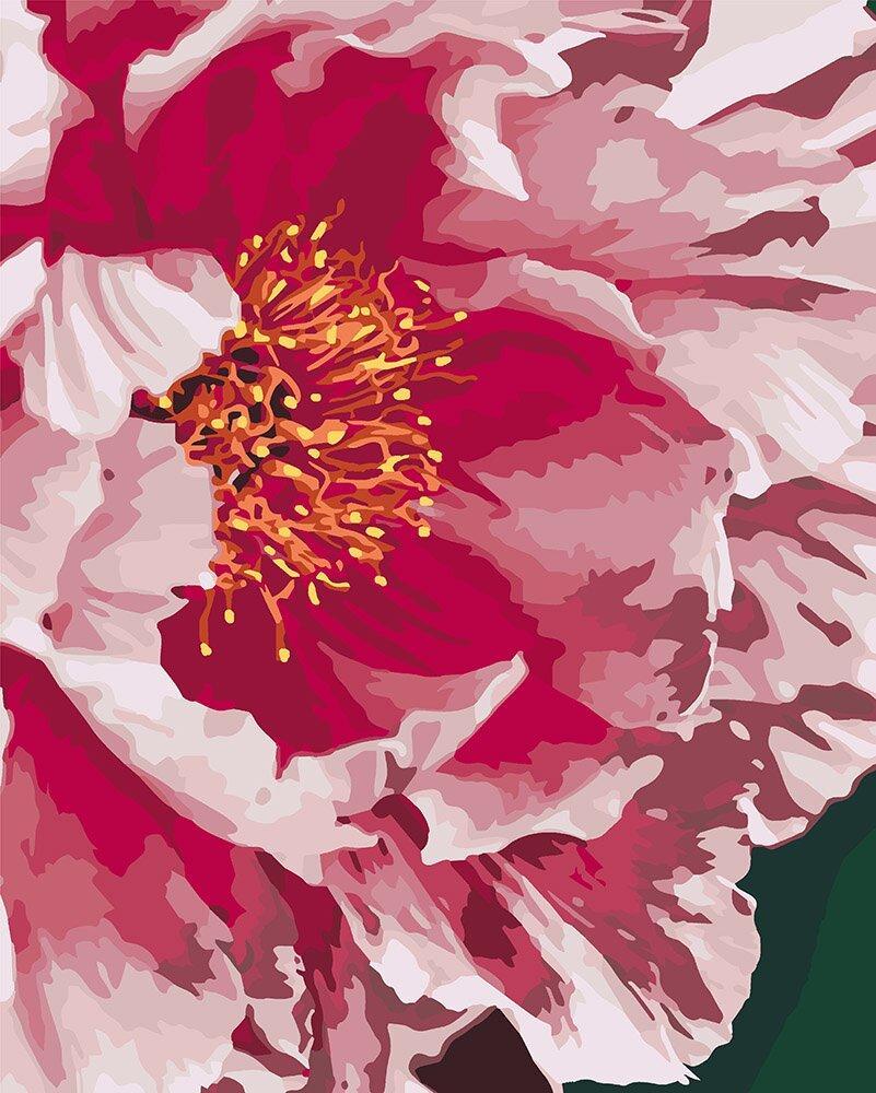 KHO3039 Набор-раскраска по номерам Розовый пион, Без коробки