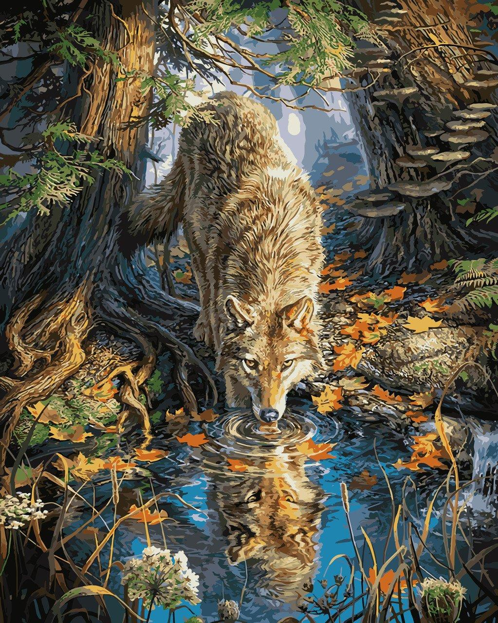 VP930 Раскраска по номерам Волк на водопое