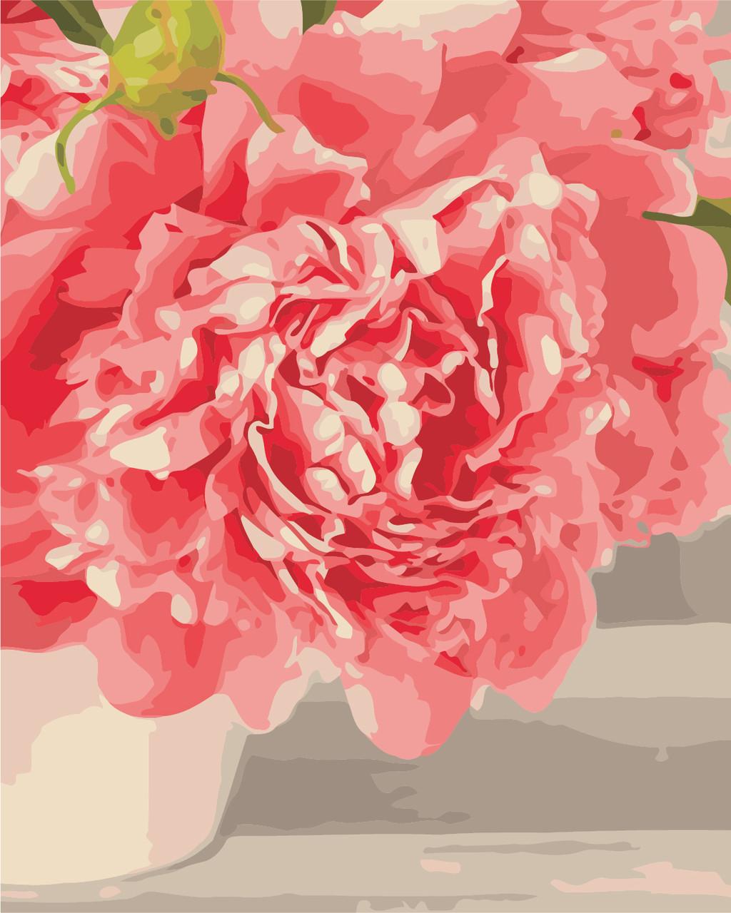 AS0330 Набор живописи по номерам Розовые пионы, В картонной коробке