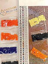 DM-264 Набор алмазной живописи Живописная осень, фото 2