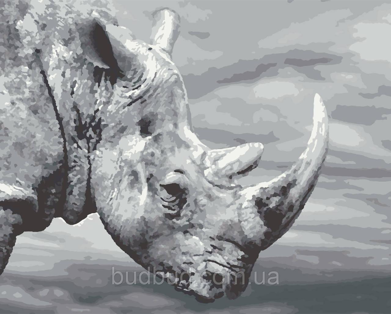 """Картина по номерам """"Носорог"""" 40х50 1 шт."""