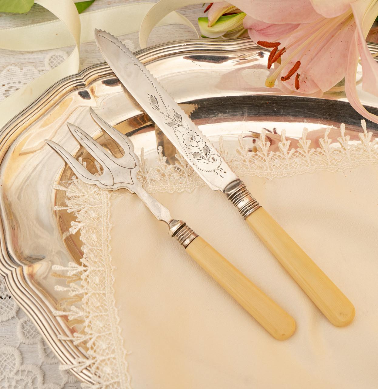 Англійська столовий ніж і вилка з целулоїдними ручками, сріблення, Англія