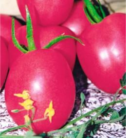 Семена томатов Малиновка