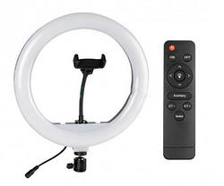 Светодиодная LED лампа с пультом ДУ Ring Fill Light YQ-320A + Студийный штатив Stend 210 см, фото 2