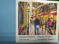 """Картина-раскраска по номерам на холсте 40*50 РН9222 """"Дождь в (н-р акрил. красок+ 3 кисти) в картонной коробке"""