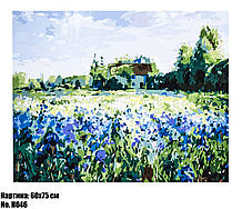 """Картина по номерам """"Синеглазки"""", размер 60 х 75 см, код H046"""