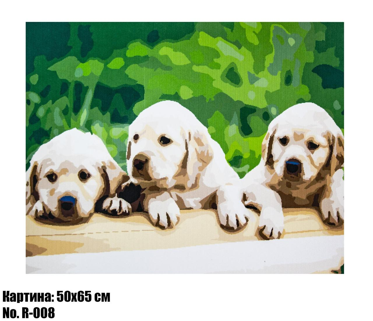 "Картина по номерам ""Маленький Лабрадоры"" размер 50 х 65 см, код R-008"