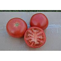 Насіння томату індетермінантного 1810 F1, ранній новинка!!!, (250 нас.) Lark Seeds