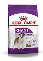 Полнорационный сухой корм для взрослых собак гигантских размеров Royal Canin Giant Adult (4 кг.), фото 1
