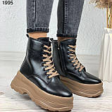 Только на 24 см! Женские ботинки ЗИМА черные с коричневым на шнуровке эко кожа, фото 5