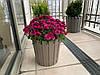 Горшок для цветов Akasya 16 л зеленый, фото 2