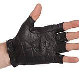 Перчатки спортивные многоцелевые BC-169 (кожа), фото 4