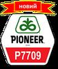 Результати випробування кукурудзи від компанії Пионер у 2014 році по всій территорії України