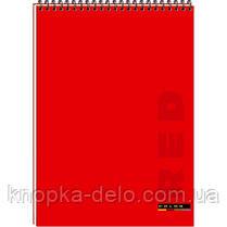 Блокнот А5, 48 листов (серия Color), фото 3