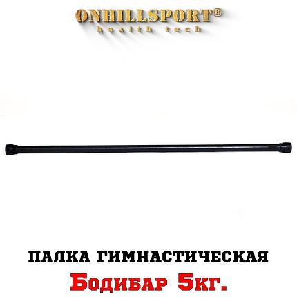 Палка гимнастическая Бодибар 5 кг, фото 2
