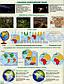 6 клас / Загальна географія. Атлас+Контурна карта (комплект) / Гільберг / Орион, фото 4
