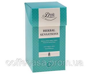 Травяной чай DTe Herbal Sensation фильтр-пак 12 шт