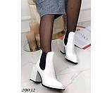 Ботильоны питон, демисезон на устойчивом квадратном каблуке, фото 5