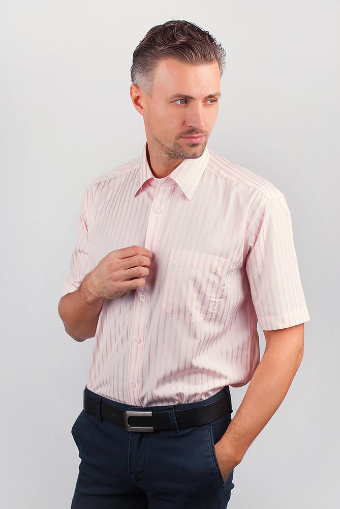 Рубашка Fra №869-16 цвет Светло-розовый